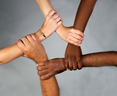 La adversidad de nuestra diversidad