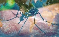 Zika Virus: An Imminent Danger