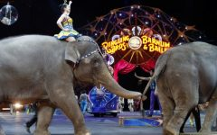 The Last Ringling Bros Elephant Act
