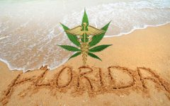 Florida: Sunshine and Medical Marijuana