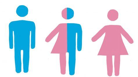 Gender Identity: It's not a Joke