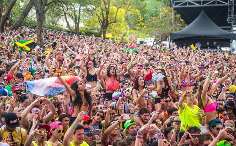 A thrilled crowd at Ultra Music Festival 2013.