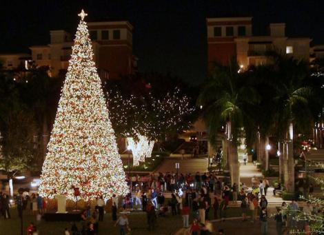 Merrick Park Tree Lighting