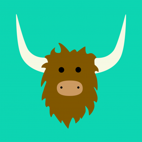 Yik Yak: Keeping it Local