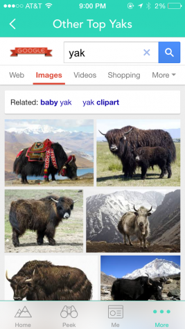 The Other Top Yaks feature is clever and amusing.