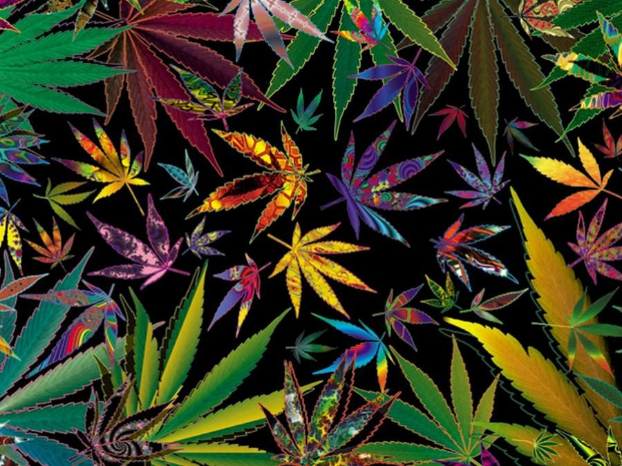 Marijuana+is+on+its+way+to+being+decriminalized+and+possibly+legalized+in+many+states+in+the+U.S.