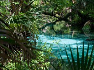 Ocala National Park, Silver Springs