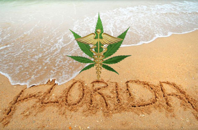 Voters finally pass amendment 2 which permits the use of medical marijuana in the state of Florida.
