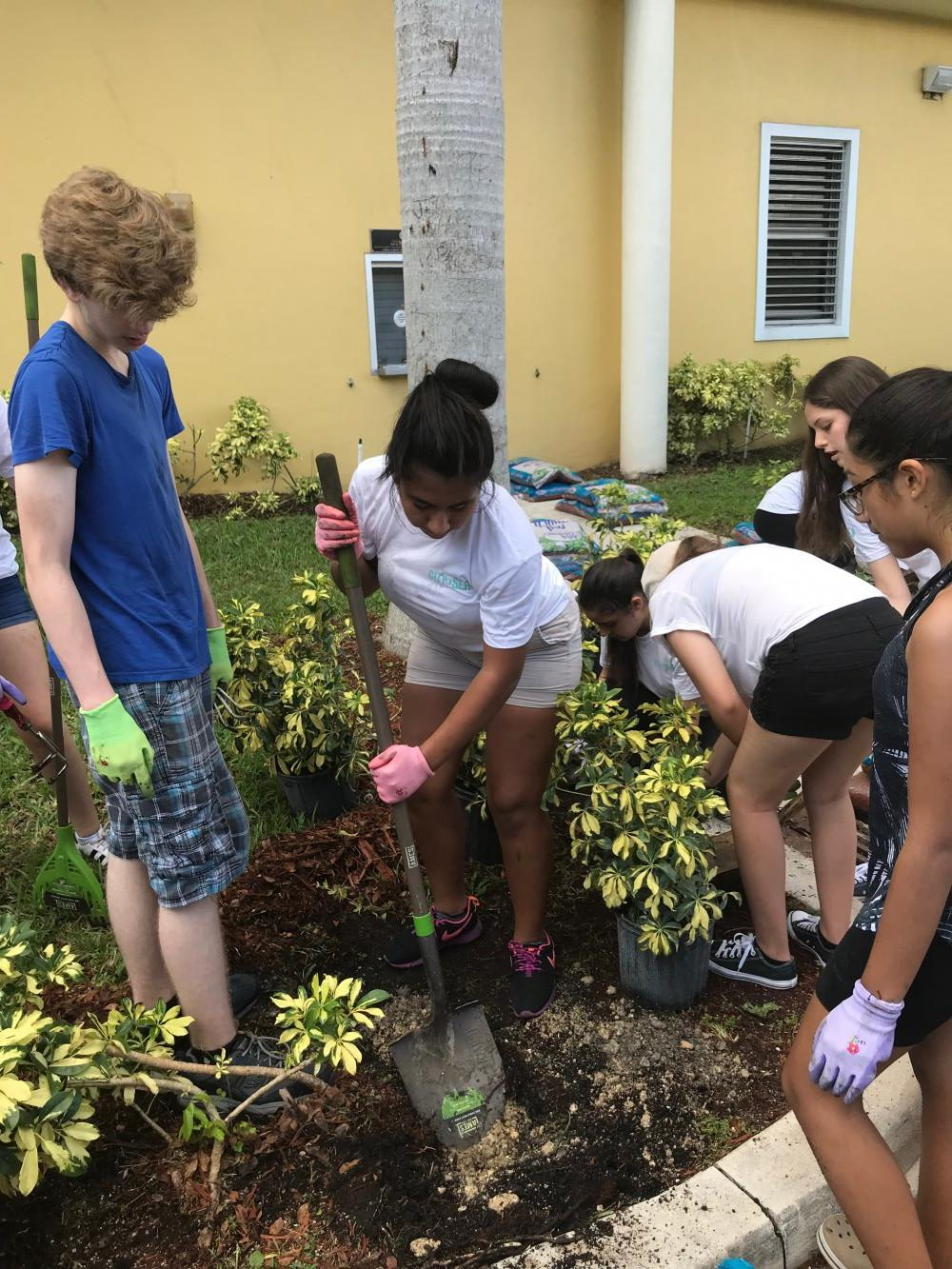 Students+and+City+Serve+volunteers+work+together+to+landscape.