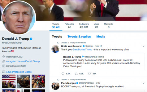 Trump's Tweet Reviews