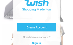 Do Shoppers Know The Truth Behind Wish?