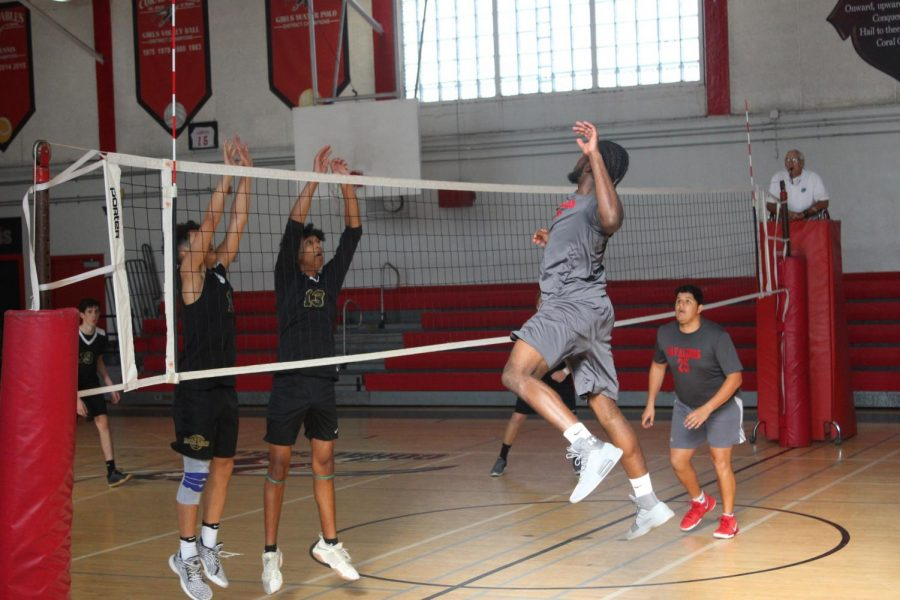 Senior Christian Brown elevates to spike the ball over the net.
