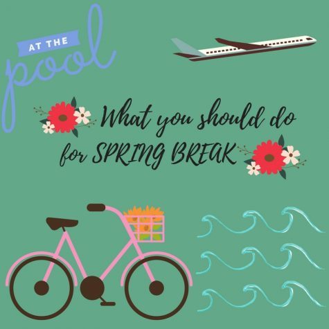 Quiz: What Should You Do This Spring Break?