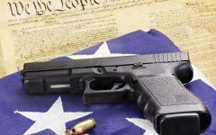 A Brief Lesson on the Second Amendment