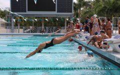 Cavalier Swimming