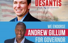 Voters determine Florida's 46th gubernatorial representatives