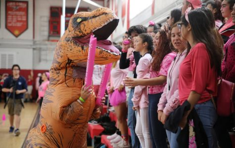 Pink Spirited Pep Rally