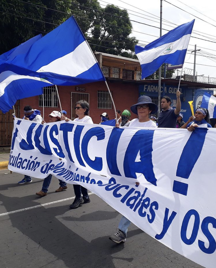 Migrants from Nicaragua hold their flag while marching through Mexico.