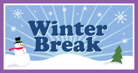 How Should You Spend Your Winter Break?