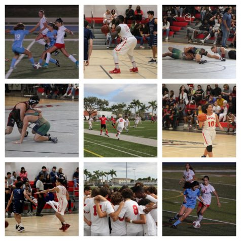 Looking back at this school's winter sports seasons, there is much to be proud of for our Cavalier athletes.