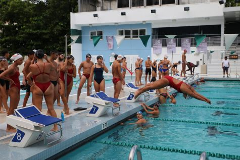 Cavalier Swimming: Splashing into a New Season