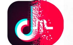 A Short Video Revolution: Musical.ly versus TikTok