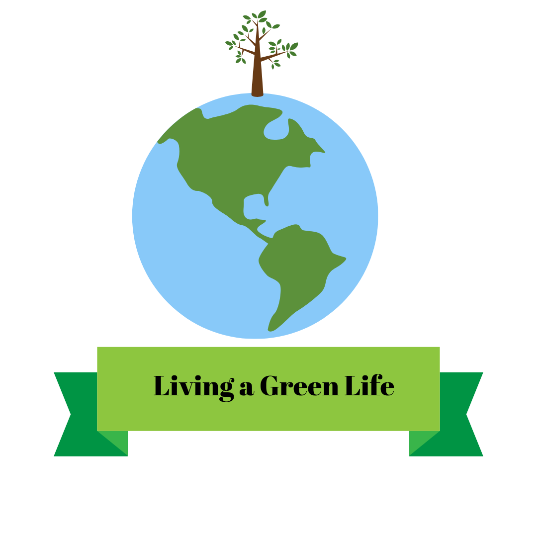There are many things you can do to help our Earth and its environment. The most minimal daily tasks can eventually add up to make a big difference. Don't let being a student stop you from helping our climate and living a greener life!