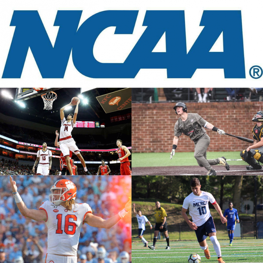 The National Collegiate Athletic Association (NCAA)  unites several of the country's biggest sports, including basketball, baseball, football and soccer, under one enormous sports umbrella.