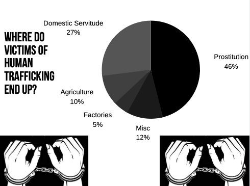 This chart demonstrates that the majority of Human Trafficking victims end up in Prostitution. - Sources: US Department of Health and Human Services