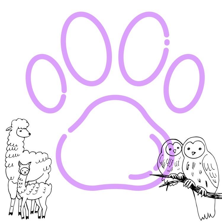 Los estudiantes ocasionales que vemos en los pasillos de la escuela poseen mascotas geniales que pueden parecer desconocidas.