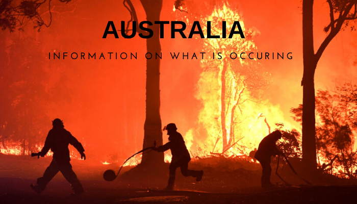 Australian Fires: What Is Happening?