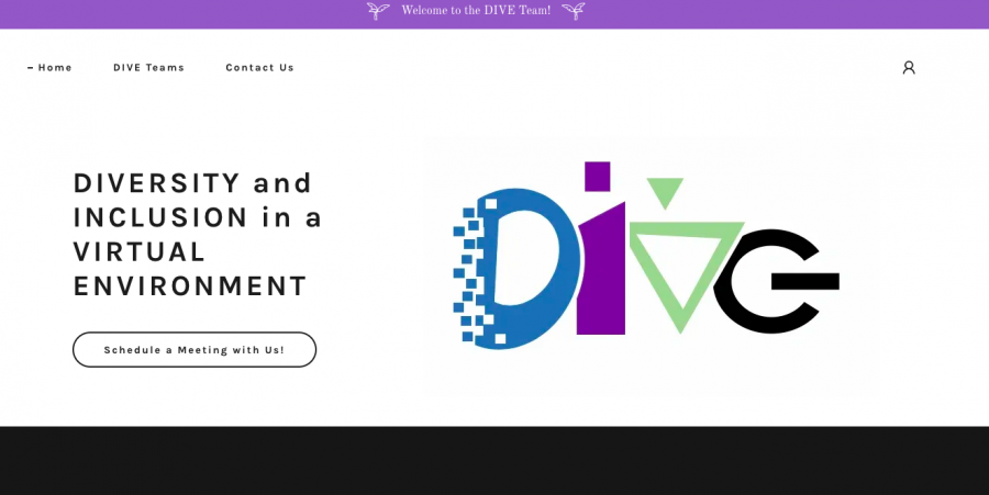 The D.I.V.E. website, founded by the Simon siblings, is a safe-space to learn more  about and discuss different cultures!