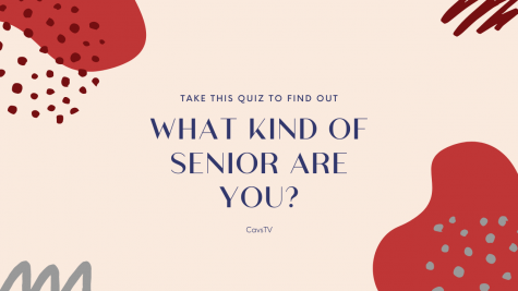 What Kind of Senior Are You?