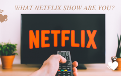 What Netflix Show Are You?