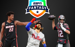 Fantasy sports ranges from all professional sports and is a skill and luck based game where you can draft players and put them against other teams weekly for a chance to win.