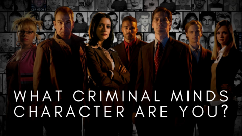 What Criminal Minds Character Are You?