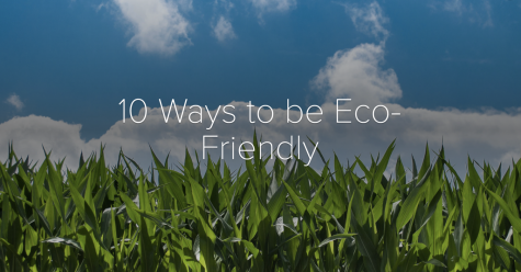 10 Ways To Be Eco-Friendly