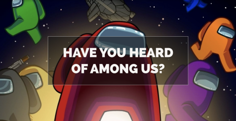 What is Among Us?