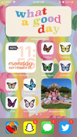 This home screen has been customized with bit of a 70s vibes, and each app has a different color butterfly.