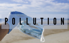 The Climate Crisis: Pollution