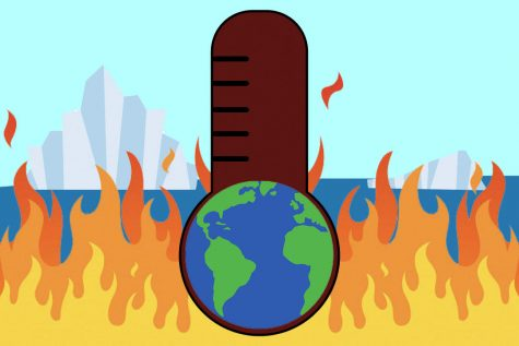 The United Nations predict that there is only 11 years left to prevent irreversible damage from climate change.