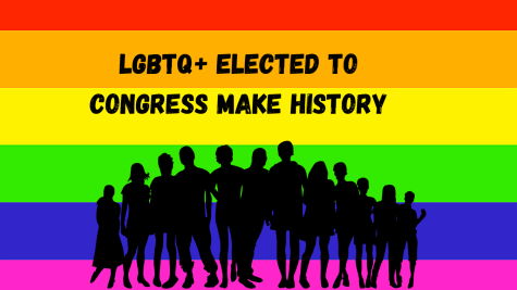 LGBTQ+ candidates make history by being elected to the government in 2020.