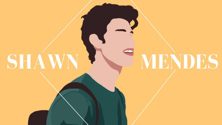 Shawn Mendes (1)