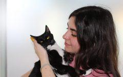 Junior Rebeca Morejon holding one of her 24 beloved cats, Khloe.
