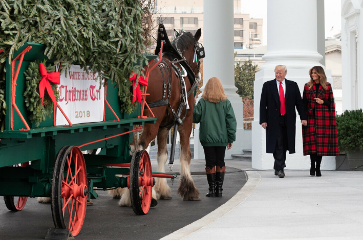 The National Christmas Tree Contest winner is delivered to the White House to kick off the holiday season.