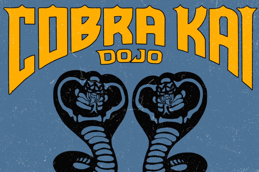 "Which ""Cobra Kai"" Dojo Are You?"