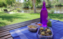Enjoy a picnic outside to safely spend Spring break.