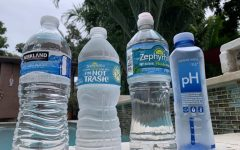 The bottled water market has very diverse competitors, but there is one that submerges the rest.