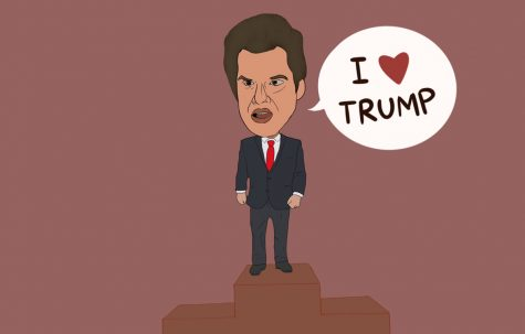 Matt Gaetz, a United States Representative from Florida, is often known as one of Trump