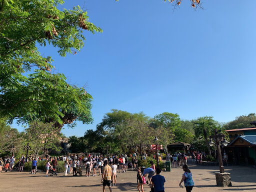 Crowds still form throughout the parks, as the theme parks retain their appeal despite the pandemic.